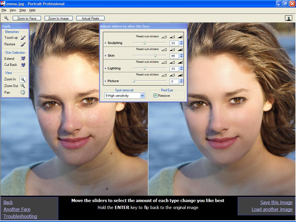 Portrait Professional 11.3.3